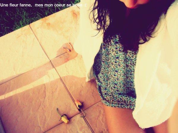 PERS0NNE N'A VUE SE QUE JE RESSENTER JE FESSAI COMENT SI TOUT ALLER BIEN MES AU FOND DE MWA J'AVAI DE LA PANE DE LA SOUFRANCE MES PERSONNE PEU MIEUX TE COMPRENDRE QUE TWA ...♥ ♥ PUIS UN JOUR VA BIEN &PUIS L'AUTRE JOUR TOUT VA MAL , LA VIE & PARFOIS CRUELLE MES TOUT ME DOIT ETRE PARFAIS ,IL YA DES HAUT & DES BAS ....♥ ♥ ♥