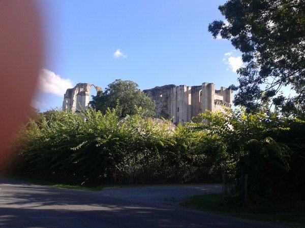 l abbaye de maillezais