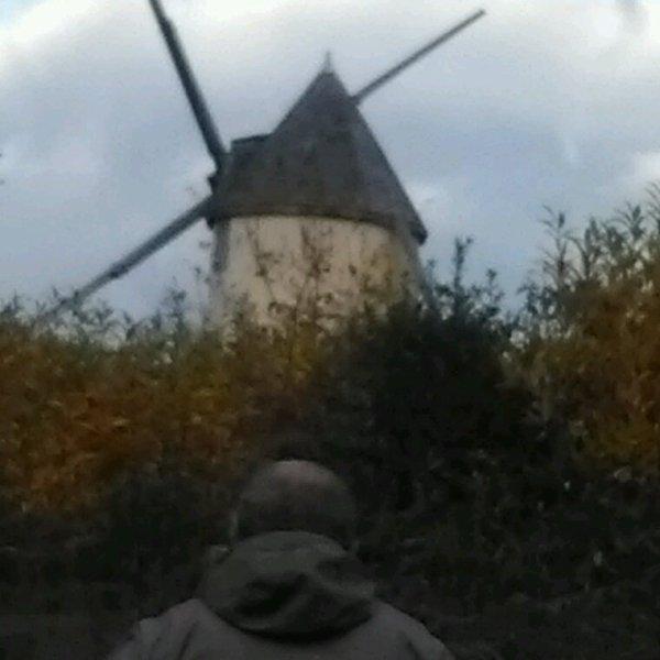 Les moulins de mouilleron en pareds
