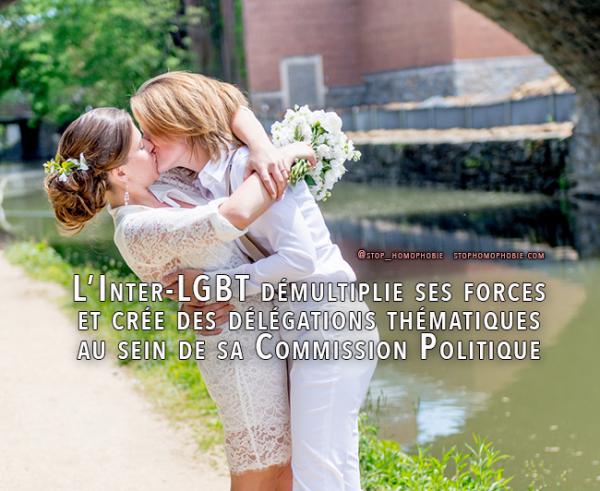 L'Inter-LGBT démultiplie ses forces et crée des délégations thématiques au sein de sa Commission Politique