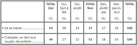 63% des Français favorables au mariage homosexuel, 49% à l'adoption : légère remontée de l'opinion sur le sujet
