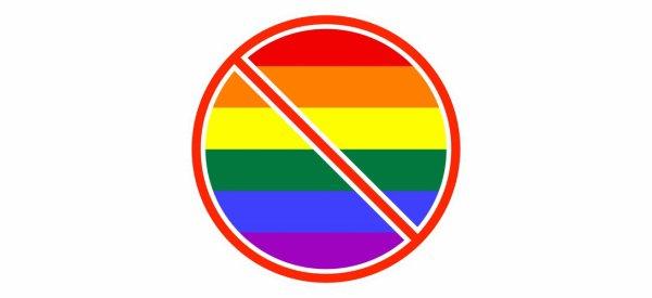 Ne dites plus «homophobe», dites «gayciste»