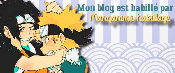 Habillage Du Blog