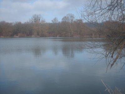 Photos des étangs