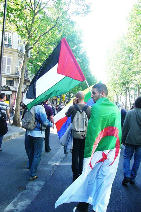 1 2 3 VIVA ALGERIA