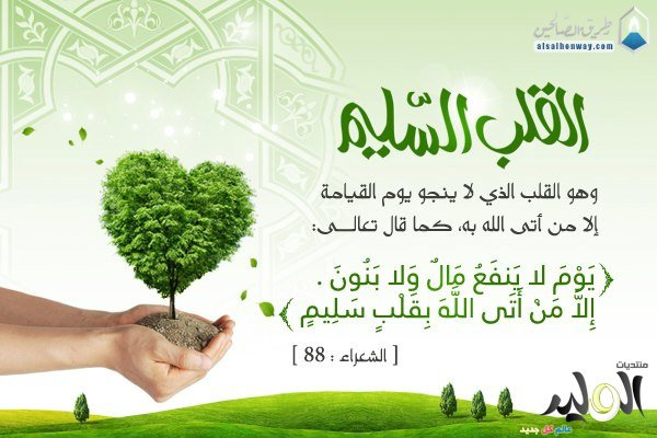 اللهم أصلح لي قلبي وقلب إخواننا من المسلمين والمسلمات  أمييييييييييييييين