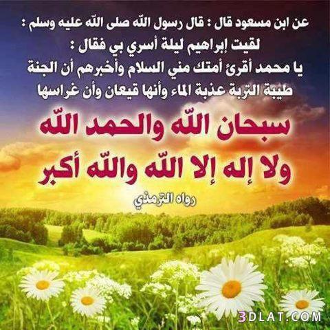 فأكثروا من قول سبحان الله والحمد لله ولا إله فإنها غراس الجنة