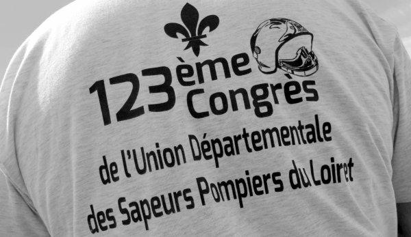 Sdis 45 - Congrès Udsp 45 - Bellegarde  2016.