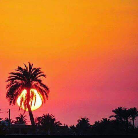 Tunisia bon nuit