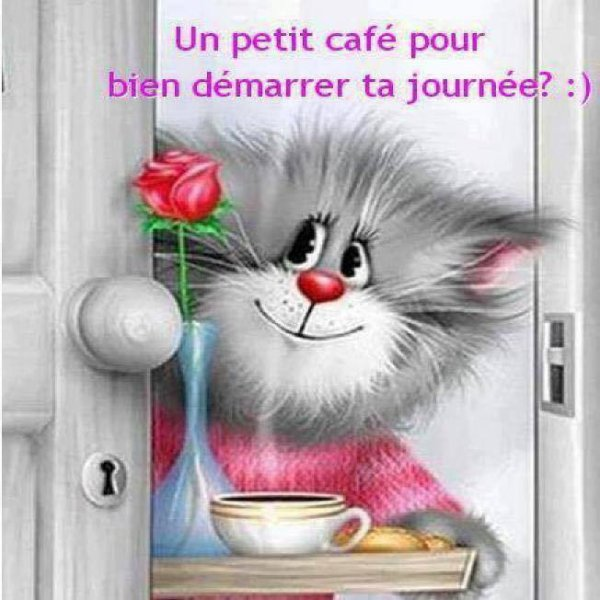 bonjour mes amies et amis