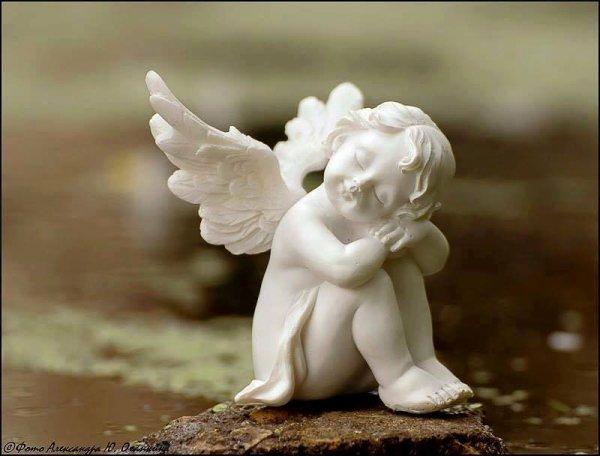 joyeux anniversaire pour tes 66 ans GéRARD le temps passe mes souvenirs reste dans notre coeur et nos mèmoires gros bisous volant
