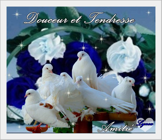 bonjour bon dimanche mes amies et amis