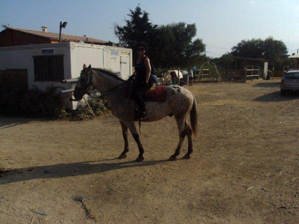 un jus de cerise,  si si,   au soleil, un peu de cheval à Serignan, et surtout l'anniversaire de ma petite fille Aliçia et le bac de ma 1ère petite fille ; la golfeuse : Marie-lise, sinon mon article est juste en dessous, si vous voulez savoir le  fait de ma longue absence, bises à tousssssssss
