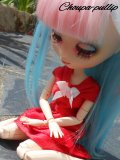 Photo de Choupa-Pullip