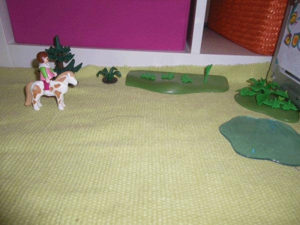 Maud en promenade sur sa Jument Horizon ! :d