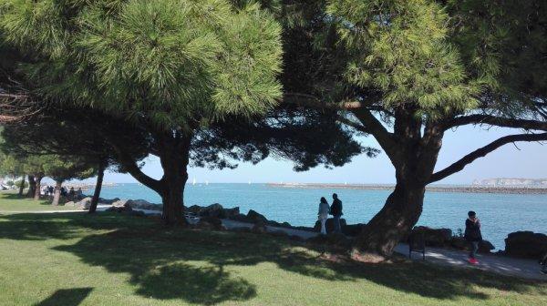 Hier en Espagne du coté de San Sebastian...