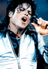 Delightful-Jackson