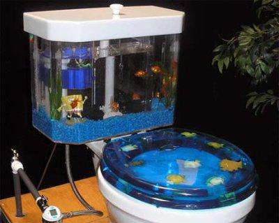 w.c. aquarium !