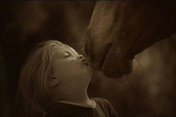 L'équitation et le handicap : ce n'est pas un obstacle !