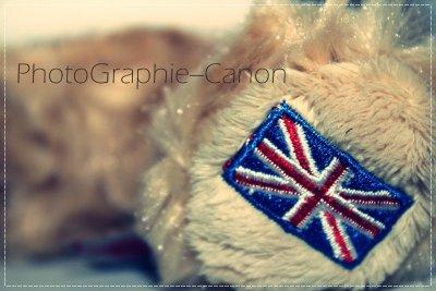Article 6 : « Mon.ami(e).d'Angleterre »