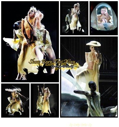 Newsletter du 14 Février 2011