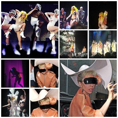 Newsletter du 21 Février 2011