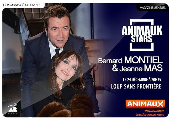 """NEWS TV - JEANNE sur la chaine """"ANIMAUX TV"""" ce mercredi 24 décembre dans l'émission """"Animaux Stars"""""""