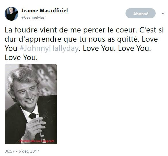 "Hommage à JOHNNY HALLYDAY - ""Quelque chose de Tennessee"" Par Johnny, Michel Berger et Jeanne"