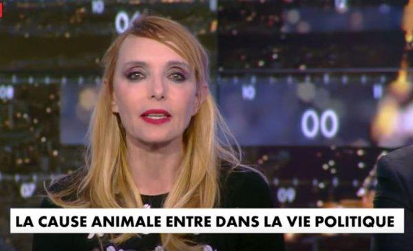 "News TV - Jeanne invitée de ""Punchline"" Avec Aymeric Caron (CNews - 29/5/19)"
