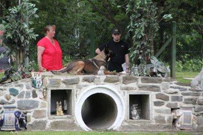 Farah de la plate fosse en ring 3 au club canin du Tournai en terrain plat