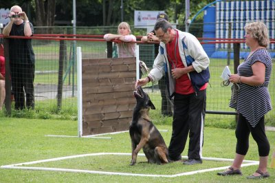 club canin a tournai