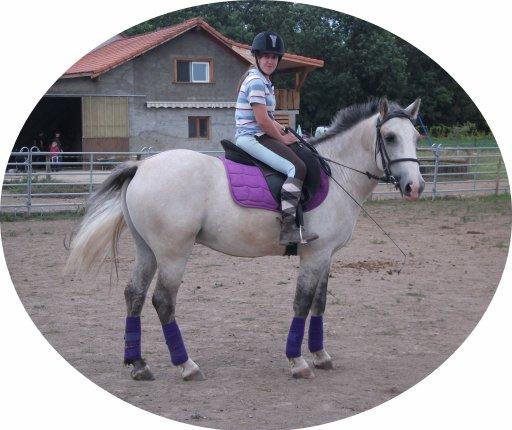 Votre cheval vous ressemble comme votre reflet dans un miroir ♥