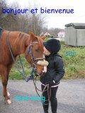 Photo de Ilove--horses