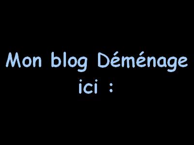Déménagement du blog ^^