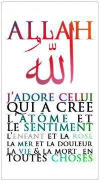 AMOUR Allah Maitrise l'Origine de l'Univers & le Reste