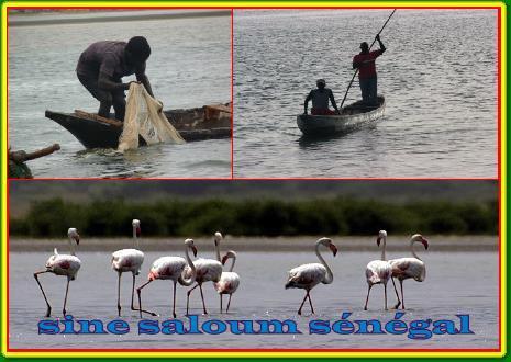 GUIDE TOURISTIQUE SENEGAL