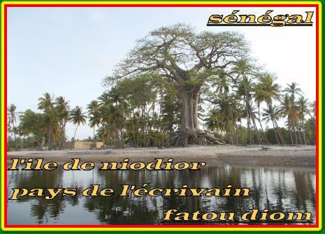 BIVOUAC SINE SALOUM  SENEGAL