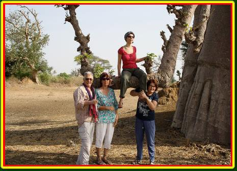 nos excursions au départ decameron royal baobab somone sénégal