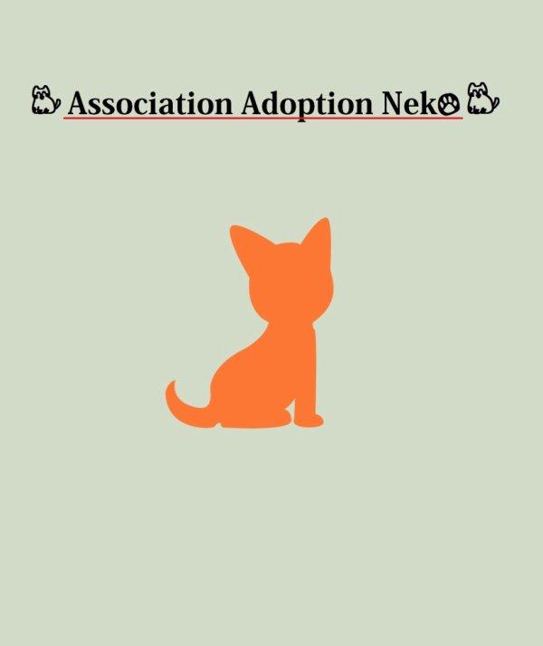 Notre Association