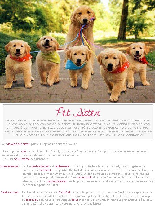 Fiche pratique # Pet Sitter
