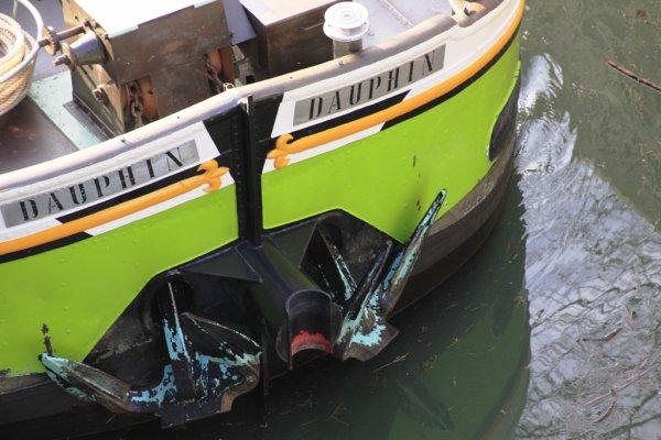 """vendredi 09 mars 2012 18:04  a travers le trou de l'objectif   """" Dauphin """""""