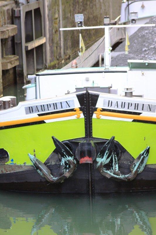 """vendredi 09 mars 2012 18:12 a travers le trou de l'objectif   """" Dauphin """""""
