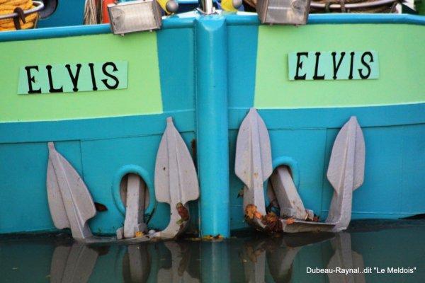 """a travers le trou de l'objectif  """" L' Elvis """""""