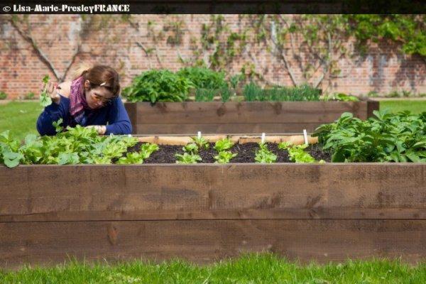 News | Lisa Marie & Michael le 27 Juin (2011) + Lisa qui fait du jardinage .