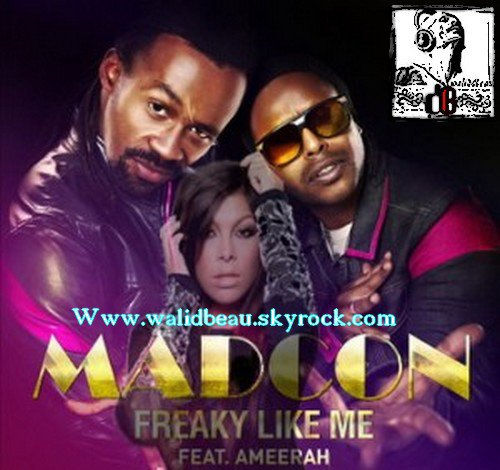 Madcon ft. Ameerah  /  Freaky Like Me (2012)