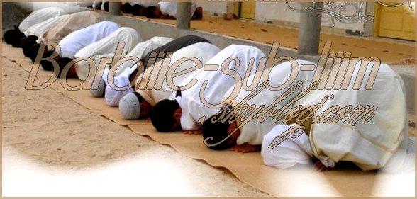 Reconvertie tout simplement par AMOUR d'Allah et de son prophète Muhammad. ma vie change & jaime sa <3