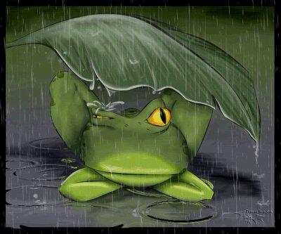 la pluie, encore la pluie