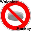 walabies-monkey