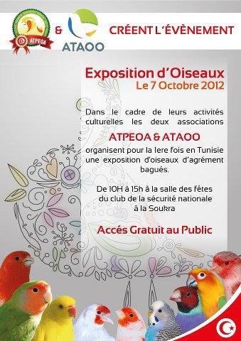 1ére Exposition d'oiseaux en Tunisie