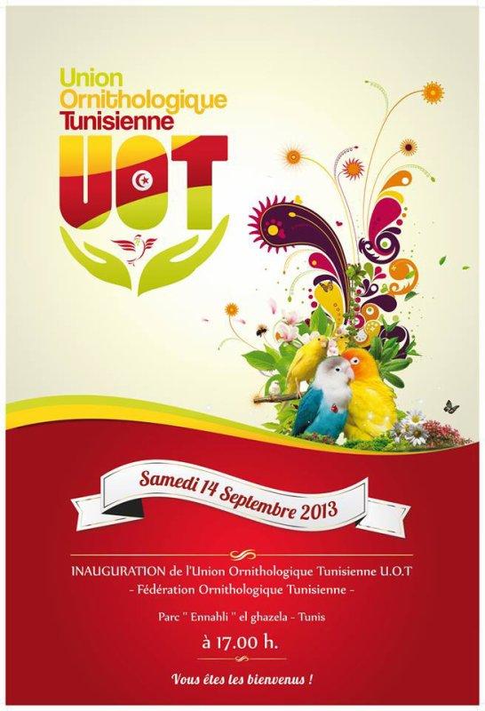 Union Ornithologique Tunisienne - UOT - la première fédération ornithologique tunisienne